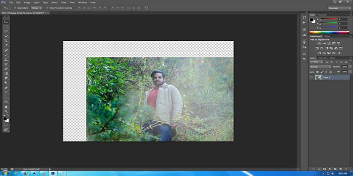 Drag the entire layer if no selection is made