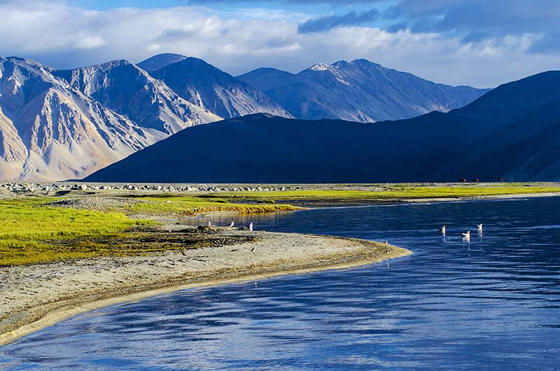 chronicles of Ladakh