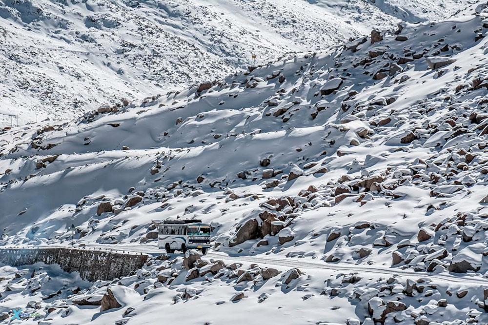 public transport in ladakh
