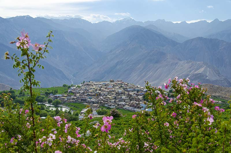 budget trip to spiti valley