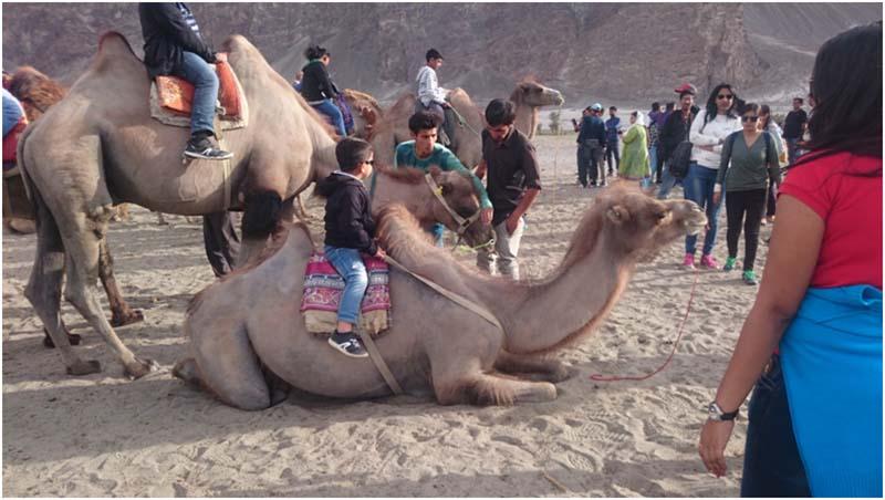 ladakh with infants