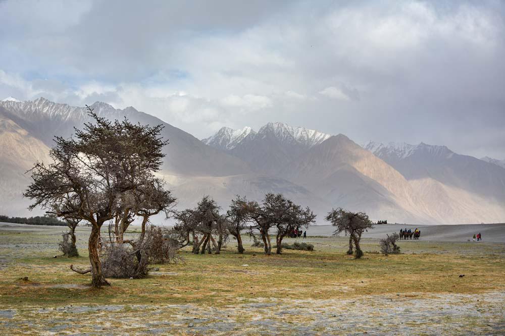 Ladakh 2 Days Trip