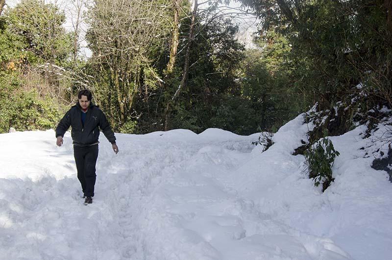easy winter treks in himachal