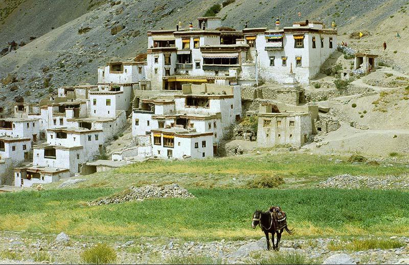 Mobile Phone Connectivity in Zanskar Valley