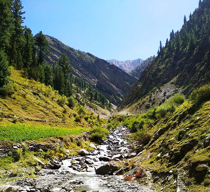 landscape in lahaul valley