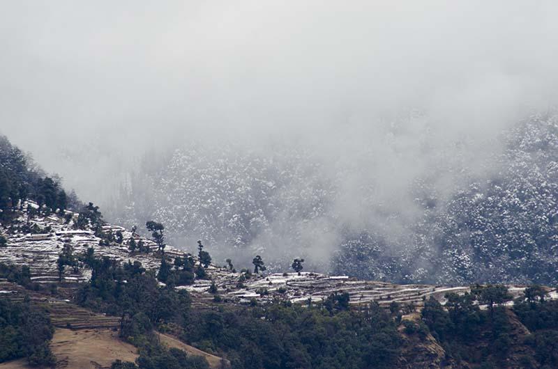 snowfall around gangtok