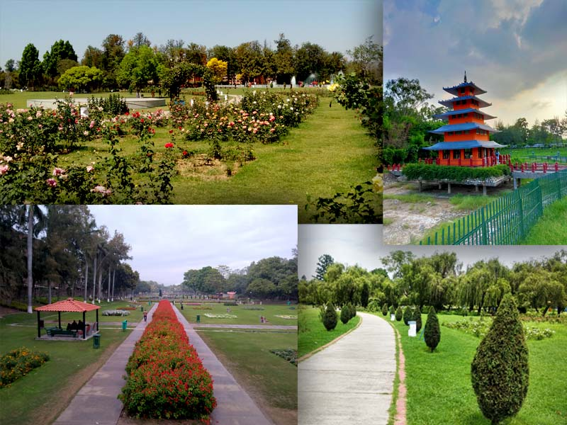 places to visit in Chandigarh gardens