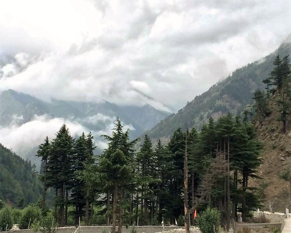 monsoon in harsil