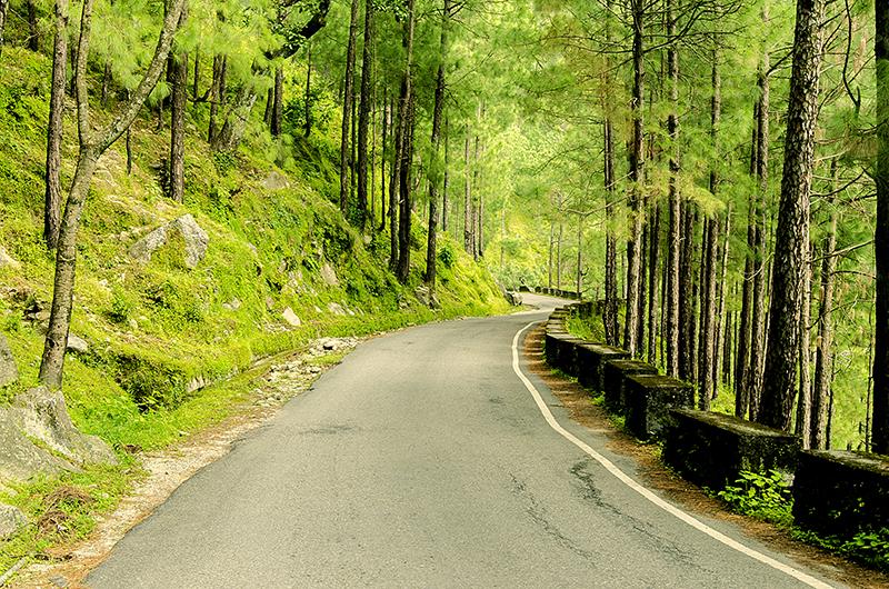 road to lansdowne