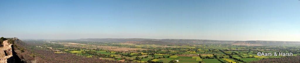 udaipur to delhi