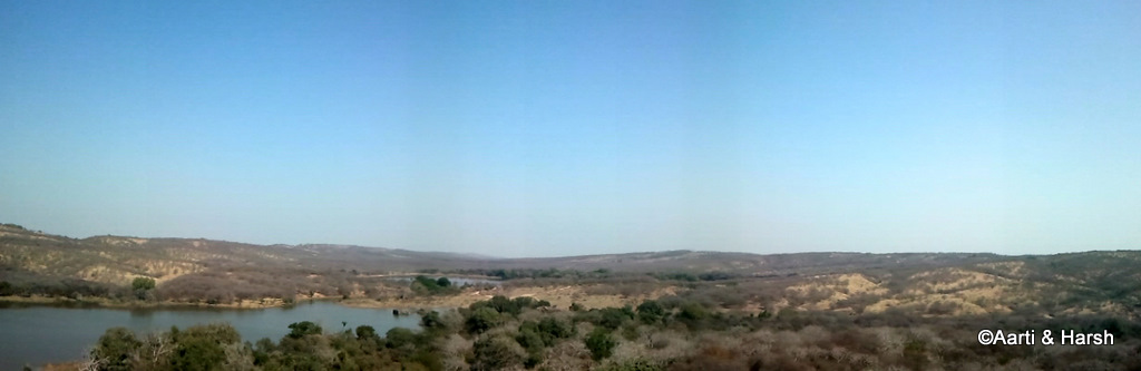 ranthambore fort and tiger reserve