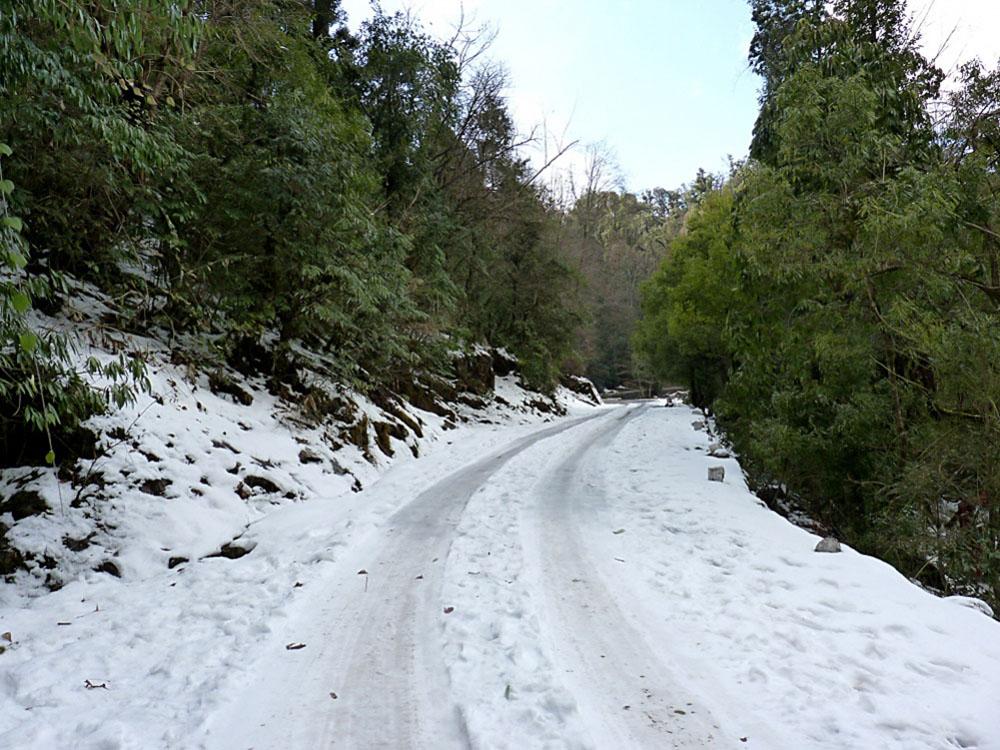 snowfall in chopta